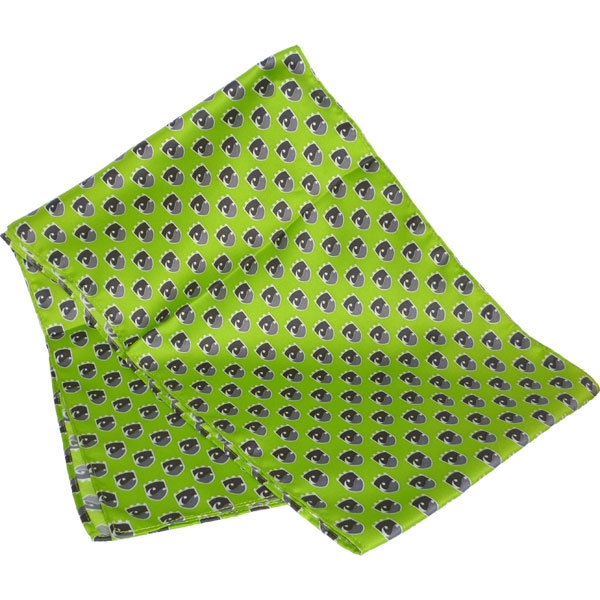 Printed Silk Scarf (Long: Screen Print)