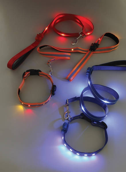 Light Up Dog Lead and Collar