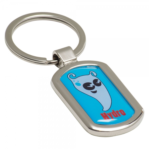 Oval Alloy Injection Keyring  UK Stock