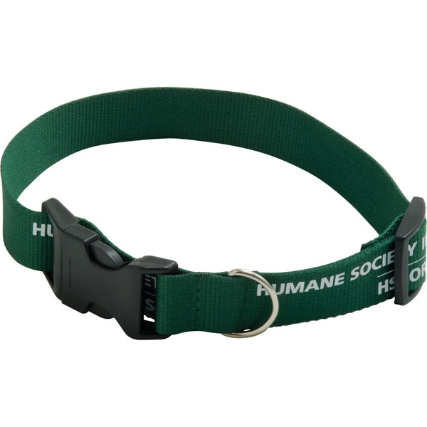 Polester Dog Collar