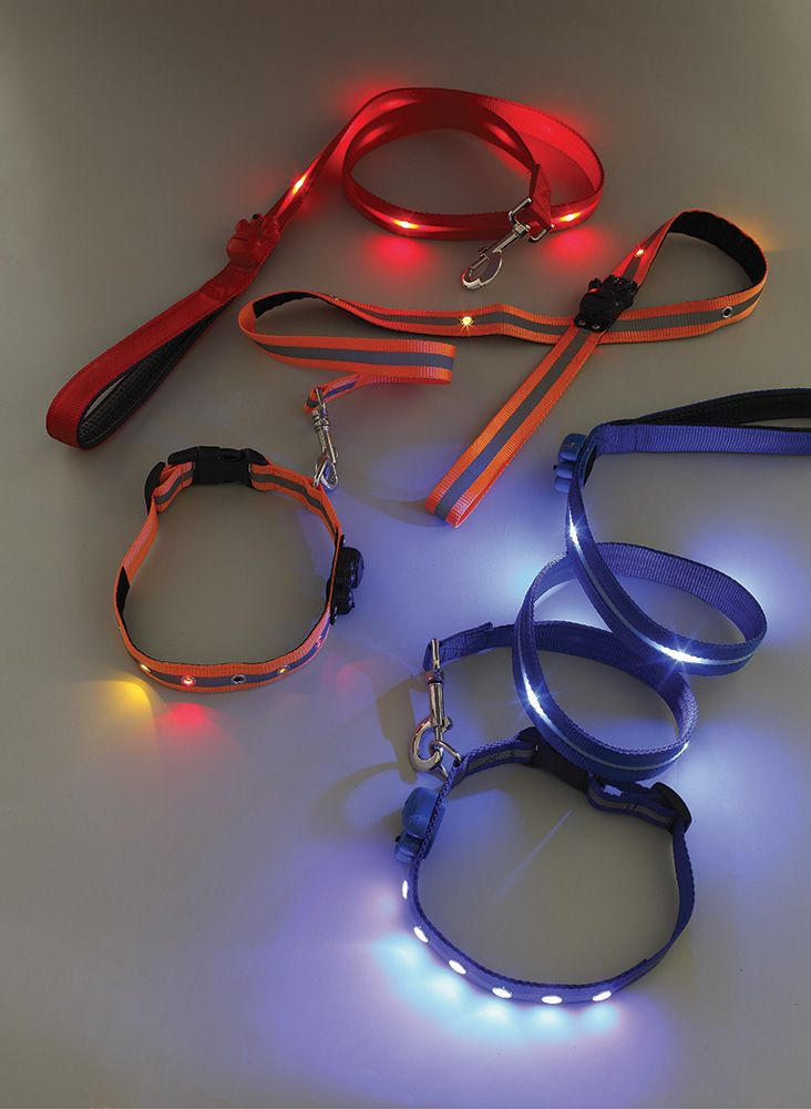 Light Up Dog Lead